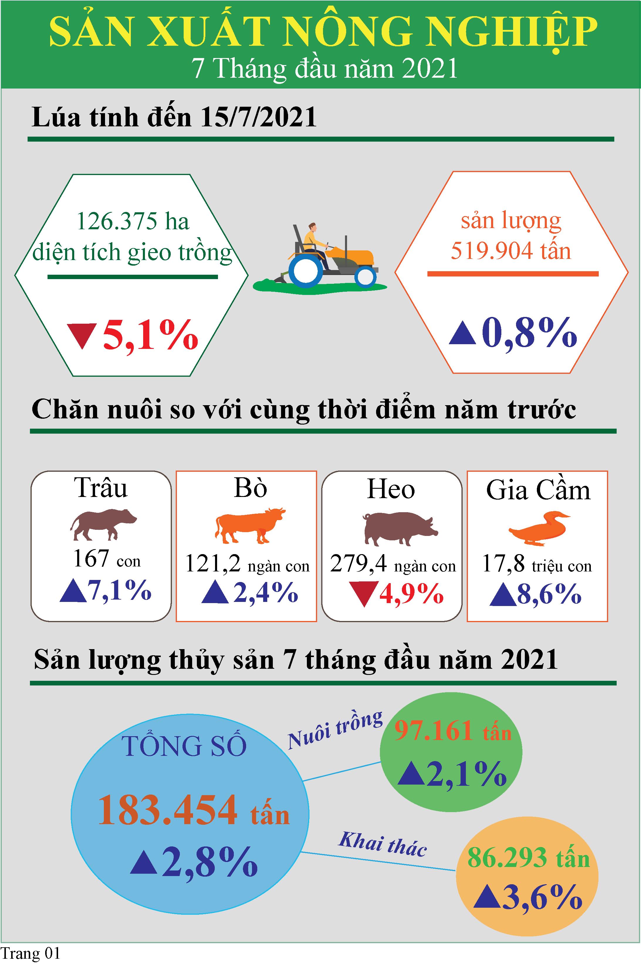 Infographic Tóm tắt tình hình kinh tế - xã hội tỉnh Tiền Giang 7 tháng đầu năm 2021