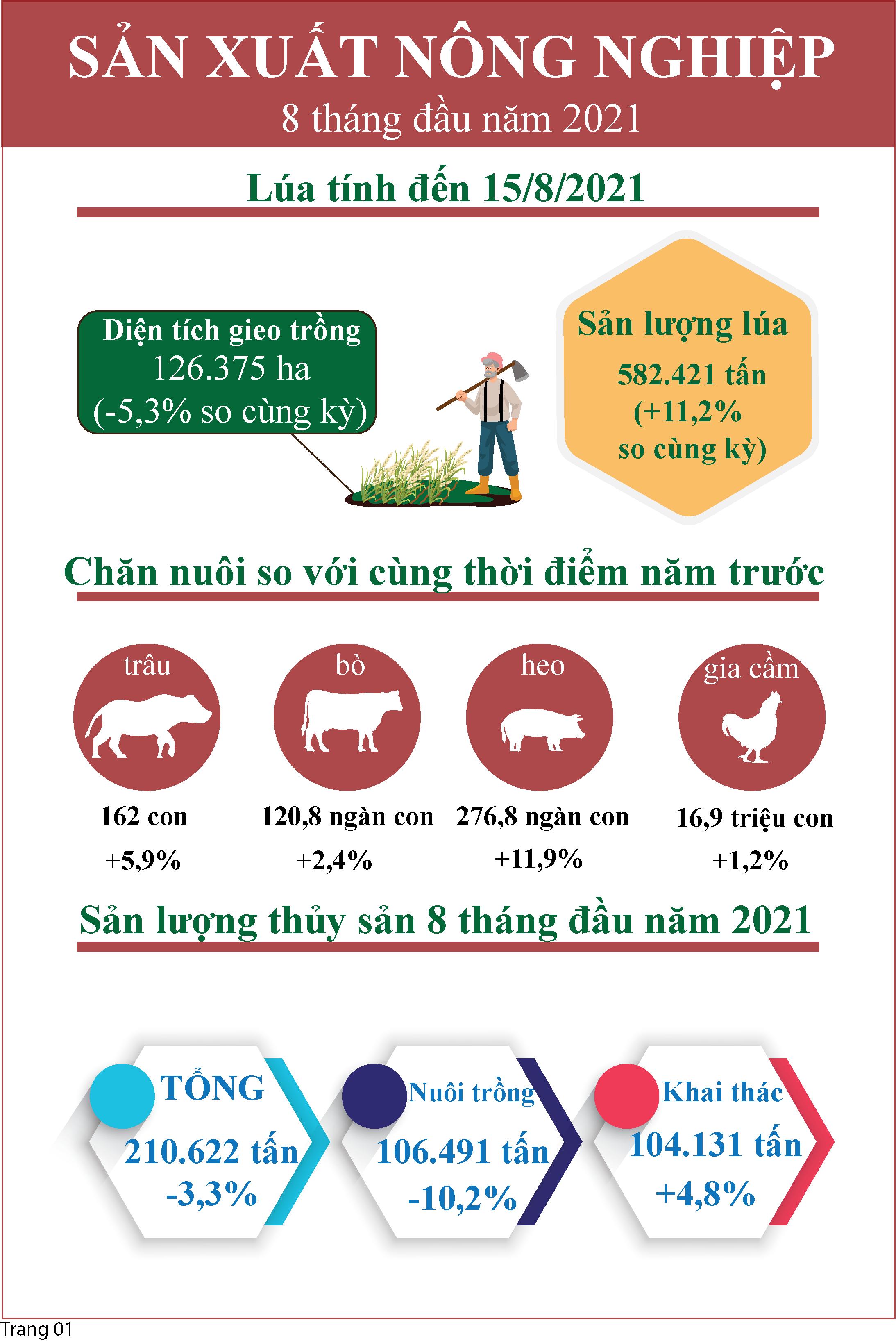 Infographic Tóm tắt tình hình kinh tế - xã hội tỉnh Tiền Giang tháng 8 năm 2021