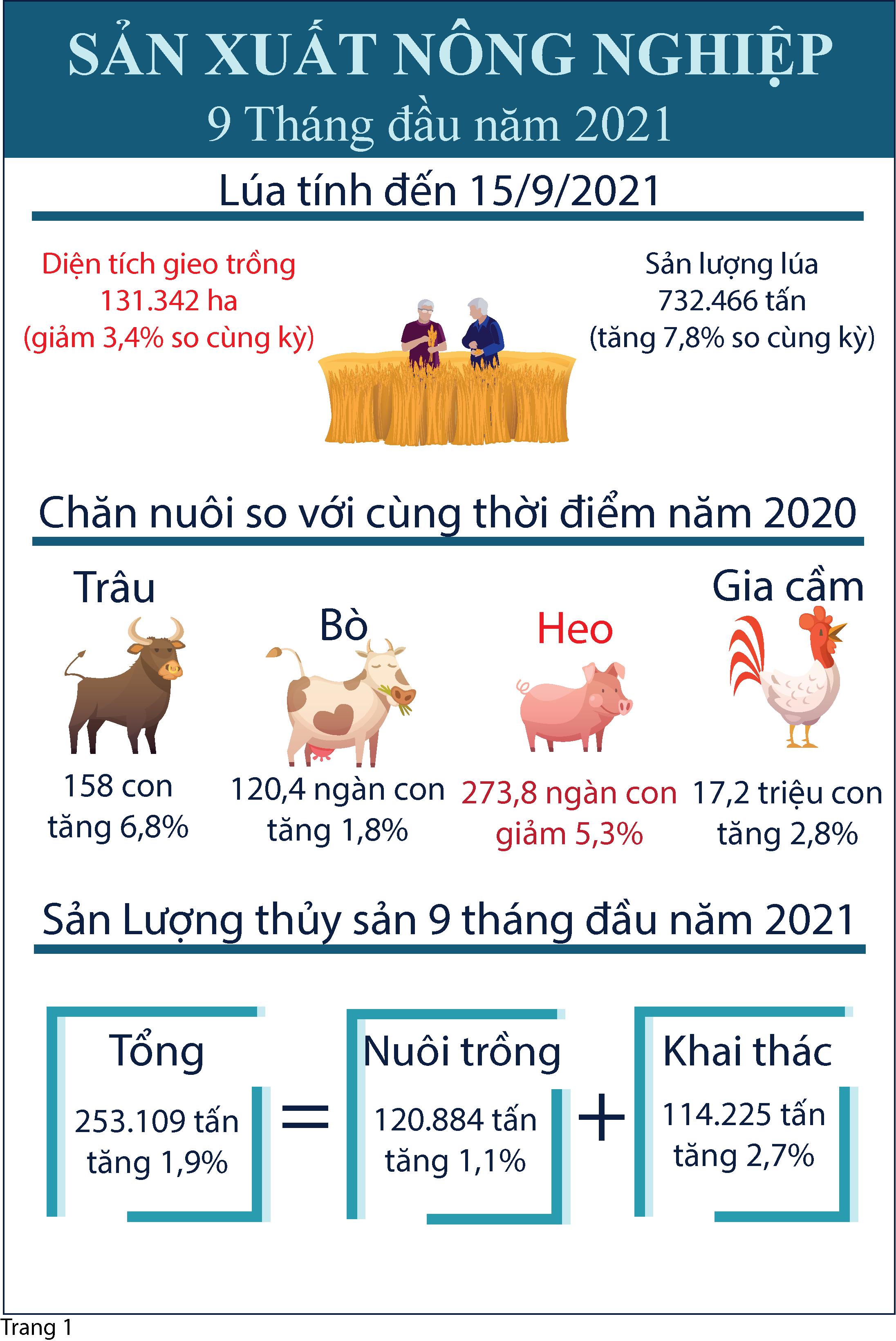 Infographic Tóm tắt tình hình kinh tế - xã hội tỉnh Tiền Giang 9 tháng đầu năm 2021