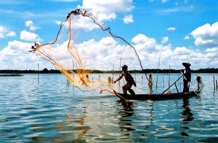Tiền Giang hoàn thành các chỉ tiêu Nông nghiệp - Thủy sản 2015